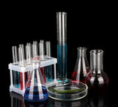 Test-tubes and green leaf tested in petri dish, isolated on black — Foto Stock