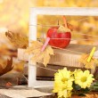 Autumnal composition with flowers, books and leaves on bright background — Stock Photo