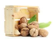Valnötter med gröna blad i woooden låda, isolerad på vit — Stockfoto