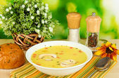 Fragrant soup in white plate on table on natural background close-up — Stock Photo