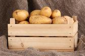 Patate mature in scatola di legno sul licenziamento — Foto Stock
