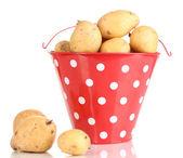 Batatas maduras no balde vermelho isolado no branco — Fotografia Stock