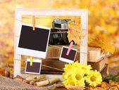 Composição outonal com flores, cartões fotográficos, moldura de madeira no fundo brilhante — Foto Stock