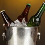 pivní lahve v ledové vědro na darck žluté pozadí — Stock fotografie #18605069