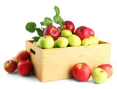Juicy apples with green leaves in wooden crate, isolated on white — Stock Photo