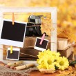 Autumnal composition with flowers, photo cards, wooden frame on bright background — Stock Photo