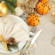 Beautiful christmas setting, close up — Stock Photo #18658775