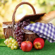 Picnic basket and bottle of wine on grass on bright background — Stock Photo #18659397