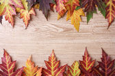 Vivid autumn maple leaves on wooden background — Stock Photo