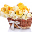 Beautiful tulips in basket isolated on white — Stock Photo #18664083