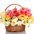 Beautiful tulips in basket isolated on white — Stock Photo #18664089