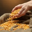 Man hands with grain, on brown corn background — Stock Photo #18697597
