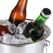 Beer bottles in ice bucket isolated on white — Stock Photo