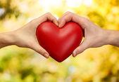 Corazón rojo en las manos de hombre y mujer, sobre fondo verde — Foto de Stock