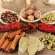 Nutmeg and other spices on sackcloth background — Stock Photo #18749237