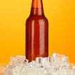 Beer bottle in ice on orange background — Stock Photo #18750271
