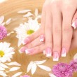 Royalty-Free Stock Photo: Woman hands with french manicure and flowers in bamboo bowl with water