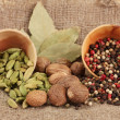 Nutmeg and other spices on sackcloth background — Stock Photo #18847337