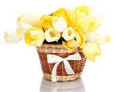 Красивые тюльпаны в корзине, изолированные на белом фоне — Стоковое фото