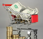 Money in cart on grey background — Stock Photo