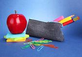 Potlood doos met school apparatuur op blauwe achtergrond — Stockfoto