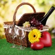 Picnic basket and bottle of wine on grass on bright background — Stock Photo #18924825