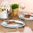 Rustic table setting — Stock Photo #18993753