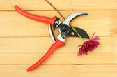 Secateurs with flower on wooden background — Zdjęcie stockowe