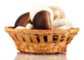 Fresh mushrooms in basket isolated on white — Stock Photo