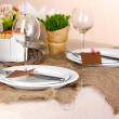 Rustic table setting — Stock Photo #19022707