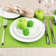 Holiday table setting, close up — Stock Photo #19136189