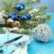Beautiful christmas setting, close up — Stock Photo #19163625