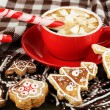 Cup of coffee with Christmas sweetness on plaid close-up — Stock Photo #19164227