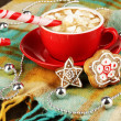 Cup of coffee with holiday candy on plaid close-up — Stock Photo #19164229