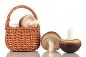 Fresh mushrooms in basket isolated on white — ストック写真