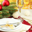 Beautiful christmas setting, close up — Stock Photo #19306887