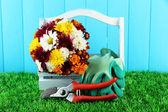 49snoeischaren met bloemen in doos op hek achtergrond — Stockfoto