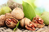 Walnuts with green leaves in garden, on green background — Stock Photo