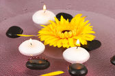 Spa stones with flower and candles in water on plate — Stock Photo