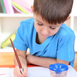 Cute little boy painting in his album — Stock Photo #19447505