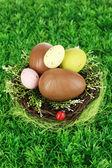 Composition des oeufs de Pâques et le chocolat dans le nid le gros plan de fond herbe — Photo
