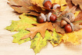 Brown acorns on autumn leaves, on wooden background — Stock Photo