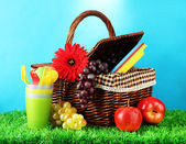Picnic basket and tableware on grass on blue background — Stock Photo