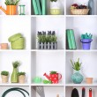 Beautiful white shelves with different gardening related objects — Stock Photo #19599475