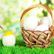 Easter eggs in basket on grass on bright background - Stock Photo