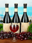 Composition of wine bottles, glass and grape, on bright background — Stock Photo