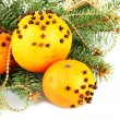 Christmas composition with oranges and fir tree, isolated on white — Stock Photo #19624095