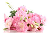 Bouquet of eustoma flowers, isolated on white — Stock Photo