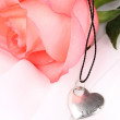 Tender pink rose with heart pendant — Stock Photo