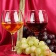 Composition of frame,wine and grapes on bright background — Stockfoto